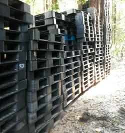 Pallet nhựa giá rẻ tại Hà Tĩnh